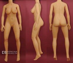 Doll Sweet DS-160 Plus body style (2014) (Body)