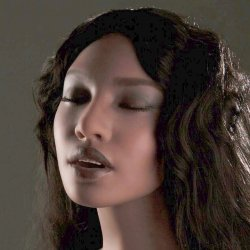 Sino-doll S06 head (2018) (Head)