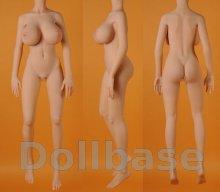 Doll Sweet DS-145 Plus body style (2014) (Body)