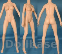 Doll Sweet DS-163 Plus body style (2014) (Body)