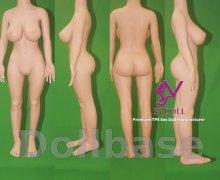SY Doll SY-158 big breast body style (2018) (Body)